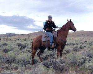 Horseback Spraying